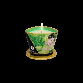 Shunga - Masszázsgyertya Zöldtea (170ml) - kozmetikai minőségű, természetes olajok