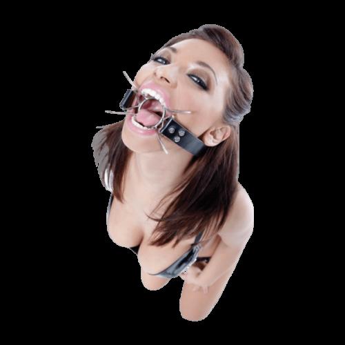 Fetish Fantasy Extreme Spider Gag - bizalmi játékok fetish kelléke
