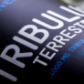 Kép 2/4 - Tribulus Terrestris - 60 tabletta - DARK - Nutriversum - természetes tesztoszteronszint optimalizáló